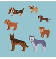 Dog breed silhouette colorful set vector image