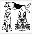 german shepherd dog - set isolated vector image vector image