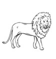 outline lion icon vector image vector image