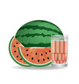 realistic watermelon vector image