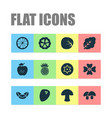 vegetable icons set with apple white cabbage dad vector image