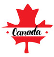 canada hand drawn maple leaf with calligraphy vector image
