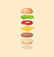 burger s ingredients vector image