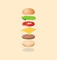 burger s ingredients vector image vector image