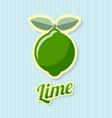 retro lime vector image vector image