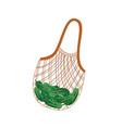 textile string reusable shopping bag with green vector image vector image