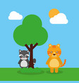two cute animals raccoon and tiger friendly vector image