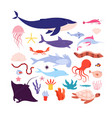 underwater fish and animals cute sea animal vector image vector image