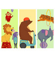 circus funny animals cheerful cards design vector image