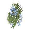 composition bell flowers with fern leaves vector image vector image