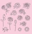 hand drawn roses digital stamps vector image