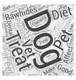 How Treats Affect Your Dogs Diet Word Cloud vector image vector image