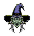 scary witch head in purple hat vector image vector image
