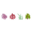seaweed underwater flora collection natural vector image vector image