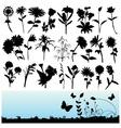 set flower vector image vector image