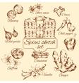 Spices Sketch Set vector image