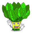 waving vegetable spinach on a cartoon plate vector image