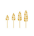 agriculture wheat set farming windmill ears of vector image