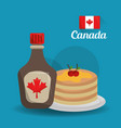 canada country american vector image