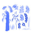 collection of exotic leaves and trees drwan as vector image