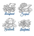 hand drawn seafood banner vector image vector image