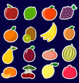 icons stickers of fruit with a white outline in a vector image vector image