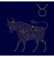 Zodiac sign Taurus over starry sky vector image vector image