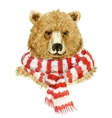 Brown bear wearing a scarf vector image