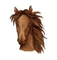 Beautiful brown horse portrait vector image vector image