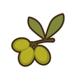 cartoon green three branch olive tree sign vector image