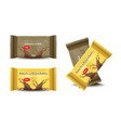 chocolate bar set product package vector image vector image