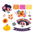 dia de los muertos isolated graphic objects vector image vector image