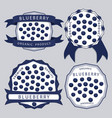 the theme blueberry vector image vector image