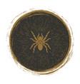 vintage spider logo design vector image