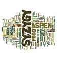 aspen nightlife syzygy text background word cloud vector image vector image