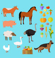 domestic animals set near fruit and vegetable vector image