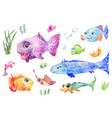 fish set watercolor vector image vector image