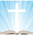 Holy Book and shine vector image vector image