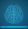 Human Brain Concept on Blue Background vector image vector image