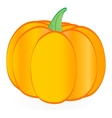 Isolated pumpkin vector image vector image