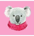 koala in a pink scarf vector image
