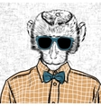 Macaque monkey hipster in a shirt poster hand vector image vector image