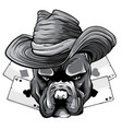 monochromatic playing cards and bulldog head vector image vector image