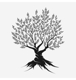 Olive tree silhouette icon vector image vector image
