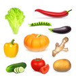 set of realistic vegetables vector image vector image