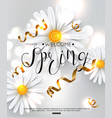 spring background chamomile flower vector image vector image