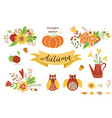 autumn floral set colorful floral elements for vector image vector image