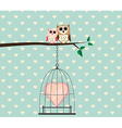 Couple Owl on Tree and Heart Love In Cage vector image vector image