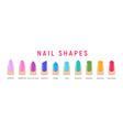 nail shapes manicure art fingernail shape vector image