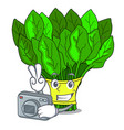 photographer fresh spinach vegetables in character vector image vector image